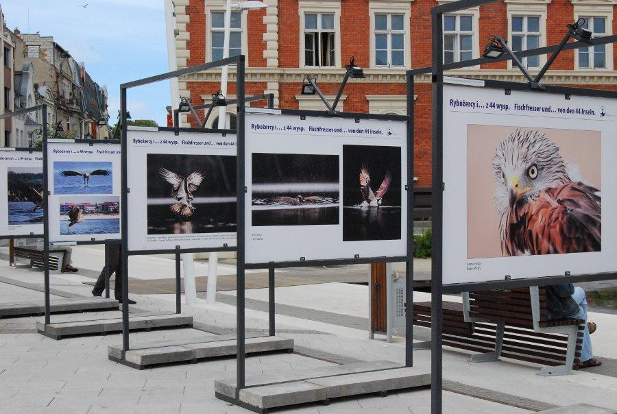 """Wystawa na Placu Wolności. """"Rybożercy i…z 44 wysp""""."""