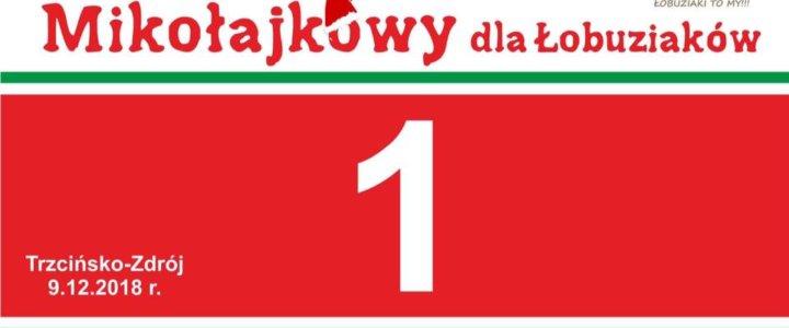 Charytatywny Bieg Mikołajkowy dla Łobuziaków