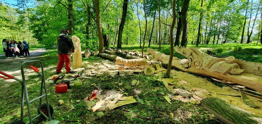 Świnoujście. W parku pracują rzeźbiarze. Zobacz zdjęcia
