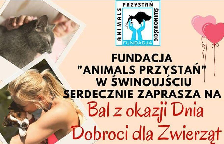 Świnoujście. W dniu 4 października obchodziliśmy Dzień Dobroci dla Zwierząt