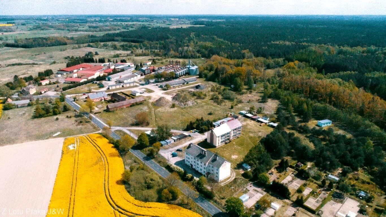 Zachodniopomorskie. Żółte pola rzepaku we wsi Ościęcin niedaleko Gryfic