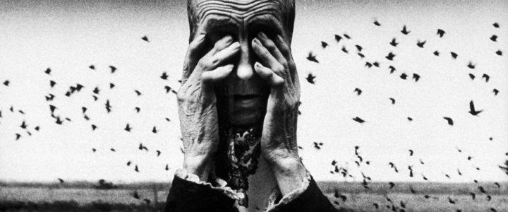 Zofia Rydet,Świat uczuc i wyobraźni,z cyklu Zagłada 1