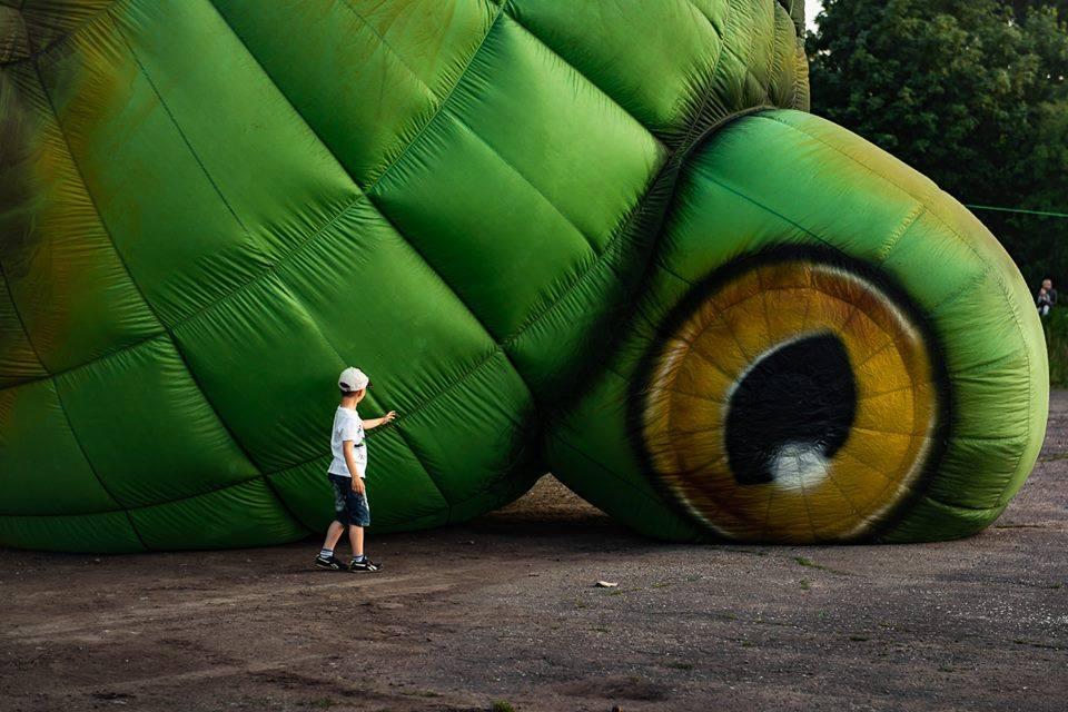 Dzisiaj w parku. Wielka żaba – balon