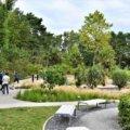 Świnoujście. 75 gatunków roślin w Ogrodzie Sensorycznym na promenadzie.