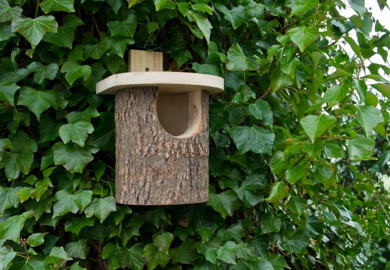 W marcu będą wieszać kolejne budki dla ptaków