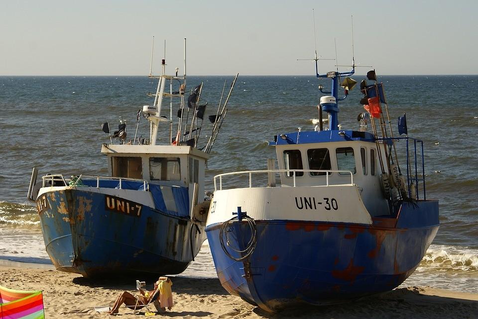 Ograniczenia połowów dorsza – komunikat MGMiŻŚ