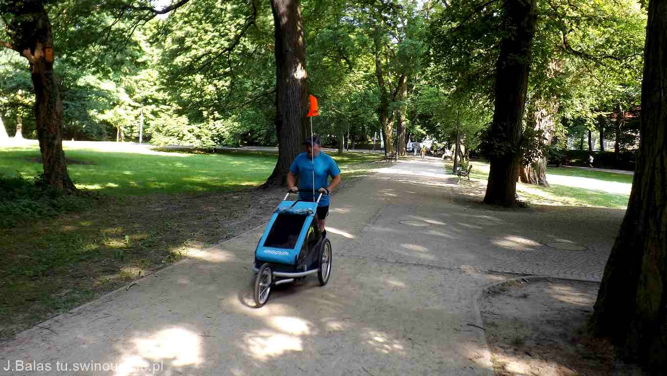 Dzielny tata z wózkiem pierwszy na mecie - 101. parkrun