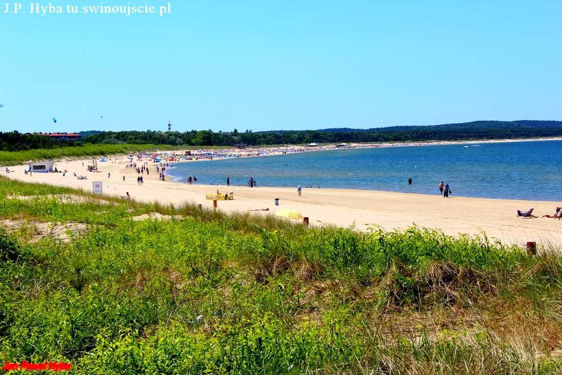 Nasza plaża w Krakowie i nie tylko…