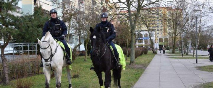 Patrole konne w Policach