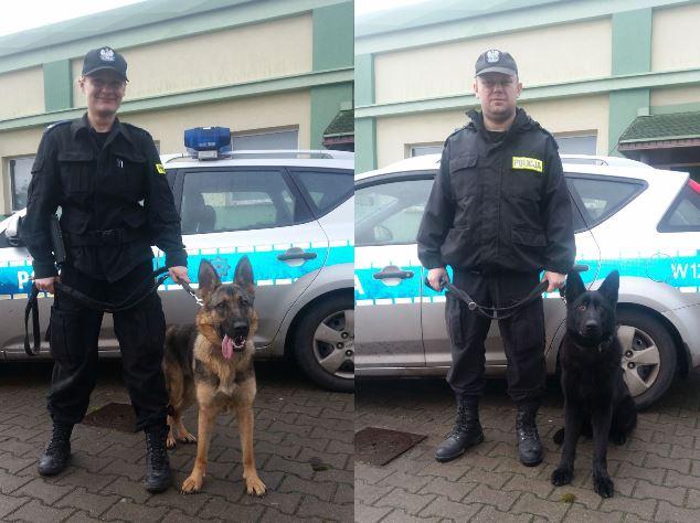 Sara i Aslan – nowe psy rozpoczęły szkolenie
