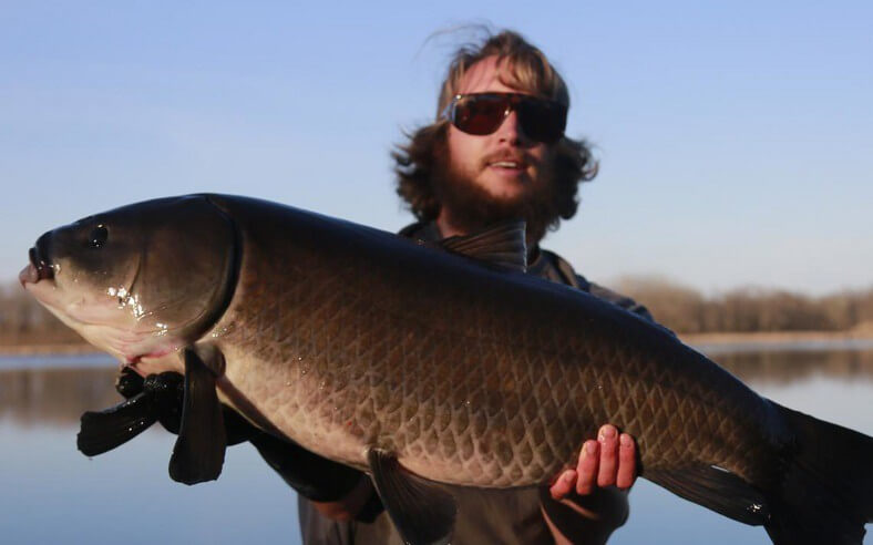 To najstarsza słodkowodna ryba świata świata. Pływała, kiedy nie było jeszcze Titanica