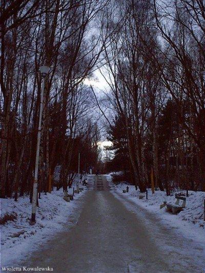 Zimowy Koncert – Roma Rappe